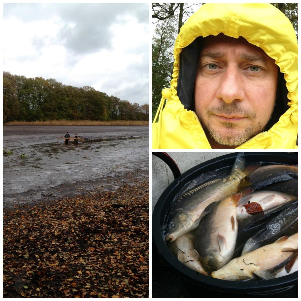 Mann gegen Fisch – die Karpfenschlacht vom Bokeler See