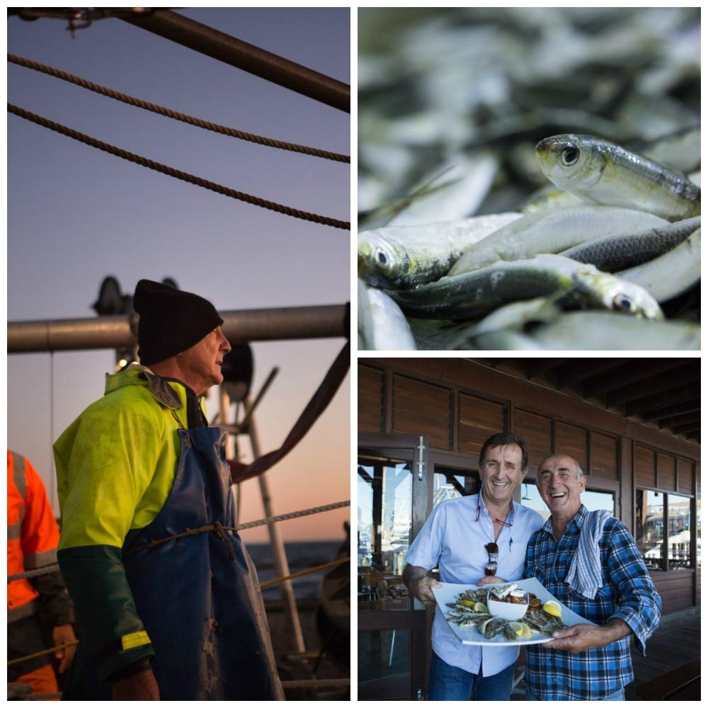 Australien (5): Who needs Lobster! – Sardinenfischen vor der Westküste Australiens