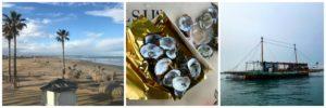 Valencia (4): Die Austern, der Aal, die Reisfelder und das Meer (und eine Band Names Limbotheque)