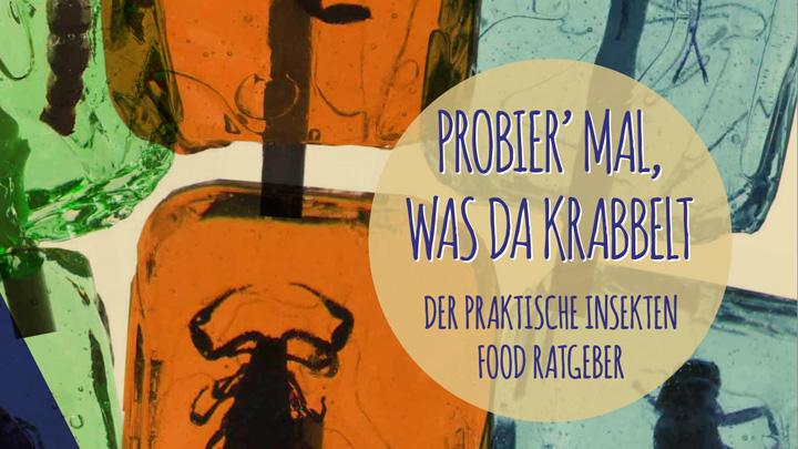 """""""Kinder kommt rein, das Essen krabbelt weg!"""" – ein kostenloses eBook über Insekten-Food"""