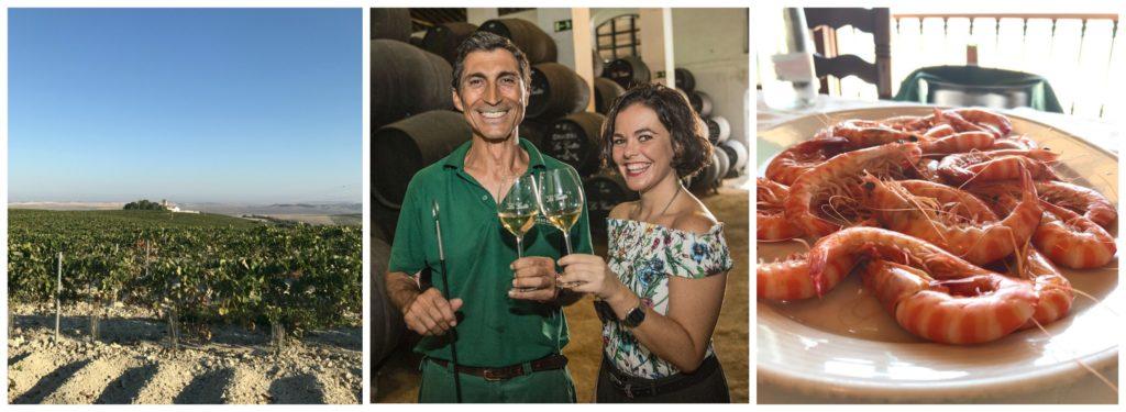 Sherryland – eine Entdeckungsreise (2): die Weinberge, Sanlúcar de Barrameda, La Guita, Barbadillo, Sherrymenü im La Carboná