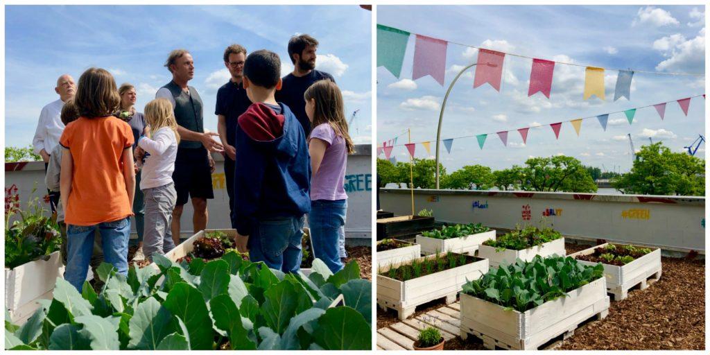 Geht doch! (1): Green Pauli – Urban Gardening für die Schulküche